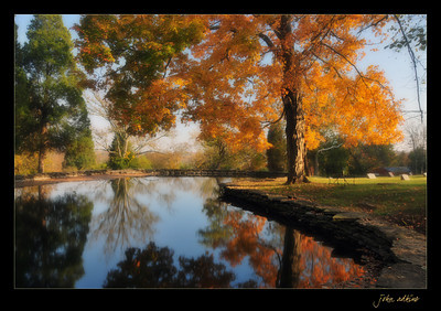 Fall colors, taken at Duncan Memorial Chapel in Crestwood, Kentucky