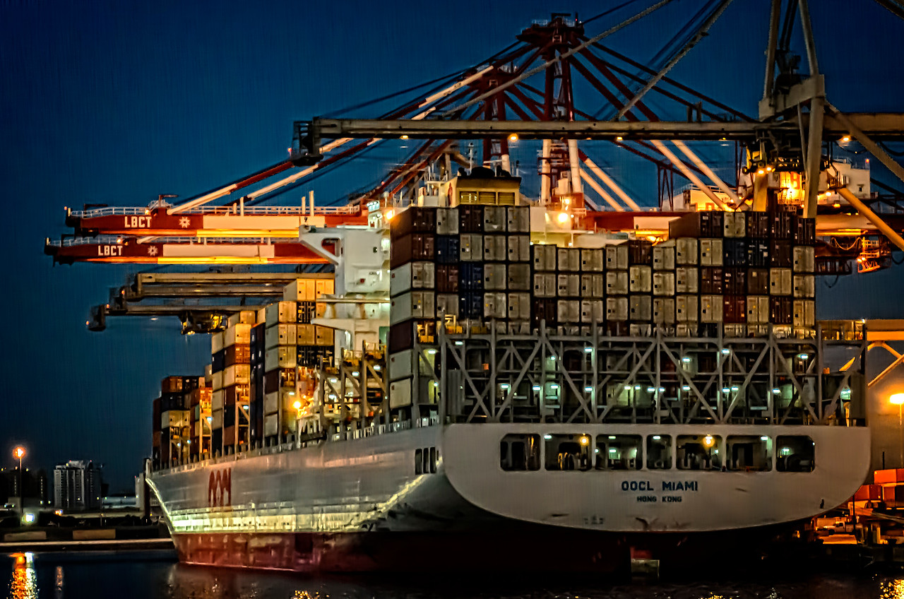 Container Ship Loaded by Cranes