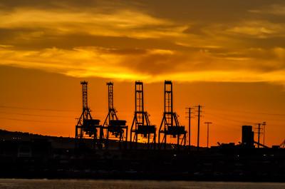Cranes after Dark