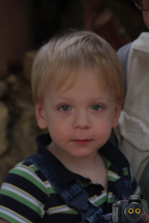 Portrait of a Young Boy with blond hair.