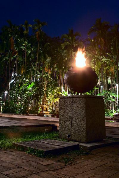 lotus pond dhara dhevi chiang mai thailand 2