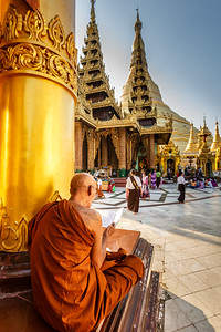 Monk studying at Shwedagon Pagoda in Yangon, Myanmar