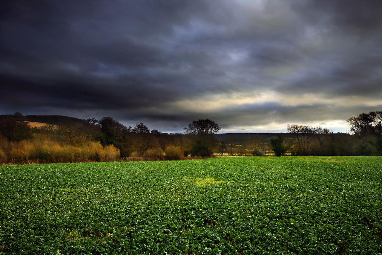 kent countryside 4