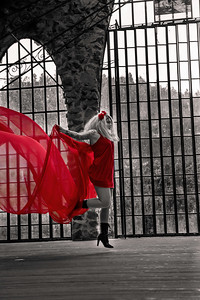 Red_Dress-bw-no