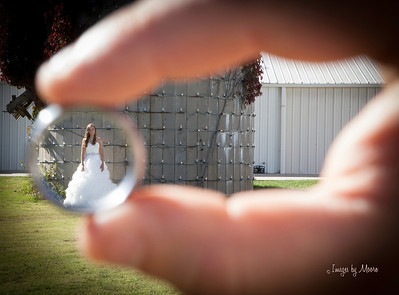 """The One"" Wedding Portraits & Event Photography"
