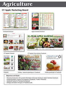 Resume page agriculture CT Apples