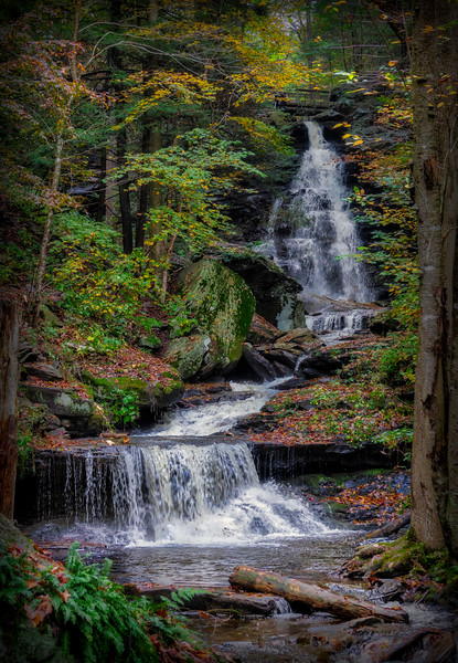 Ricketts Glen 1.jpg