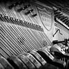 Piano Shaniko