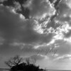 CloudIslandBW_1500