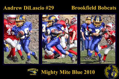 Features:  1 athletes 3 action shots (vertical orientation) of athlete   Size: 12 x 18