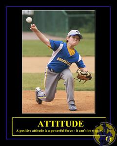 Individuals-Attitude-Baseball-Vertical-Mason