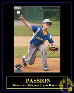 Individuals-Passion-Baseball-Vertical-Mason