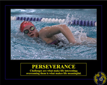 Individuals-Perseverance-Swimming-Horizontal-Taylor-16x20