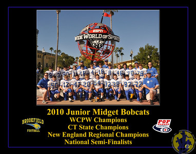 TeamPoster-Bobcats2010