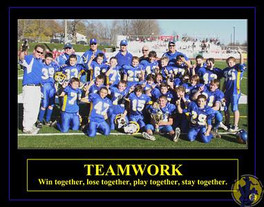 TeamPoster-Teamwork-BFYFBobcats2009