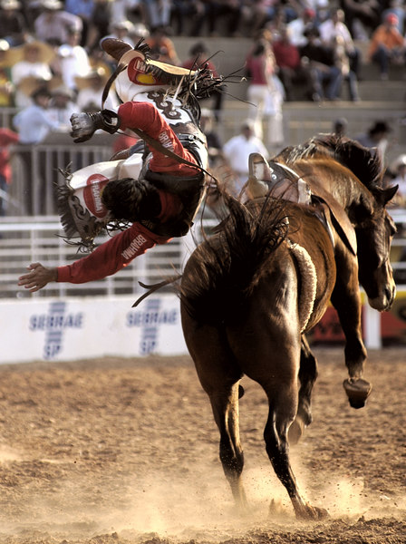 Luiz Moreira of Brazil is thrown from his horse during the Barretos Rodeo in Barretos in Sao Paulo state, Brazil. The two week cowboy festival, billed as the largest in Latin America, began in 1956 and is carnival, cowboy style. Participants and fans travel from across Brazil and the world to attend. (Photo/Douglas Engle)