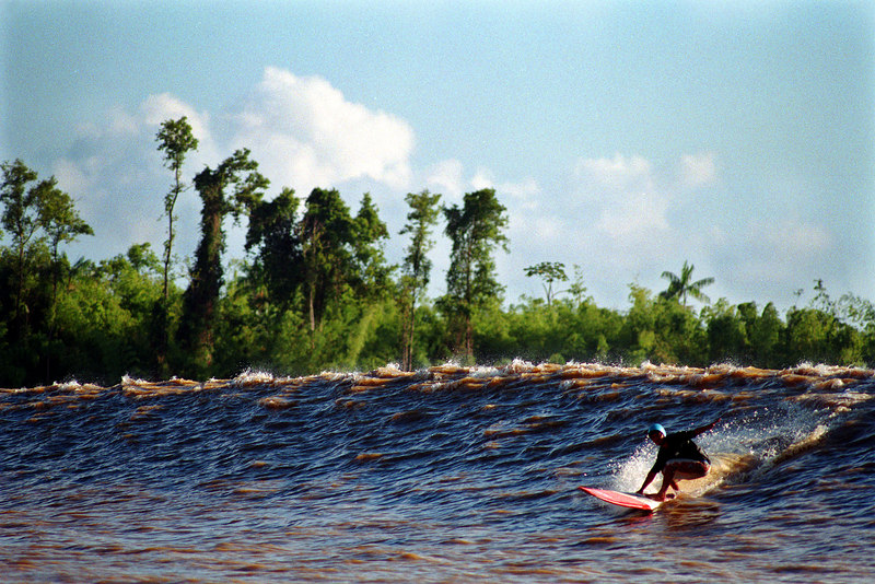 Nil Faria surfs a tidal bore wave, known as pororoca, in the Araguari River in Brazil's Amazonian state of Amapa. The Araguari pororoca is possibly the most feared of all the Amazonian tidal bores, and local residents of the remote areas surrounding the mouth of the river always feared the thunderous waves which capsizes boats and washes away anything in its path twice daily. Thanks to a group of daring surfers, they have begun to see the wave in a different way: as a tourist attraction to generate money in one of the poorest regions of Brazil. (Douglas Engle/Australfoto)
