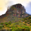 """Chisos Majesty"""