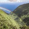 """Royal Rainbow"""