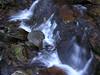 Below Toms Creek Falls, Marion NC