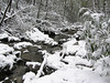 Fresh snow, Twin Falls State Park, WV
