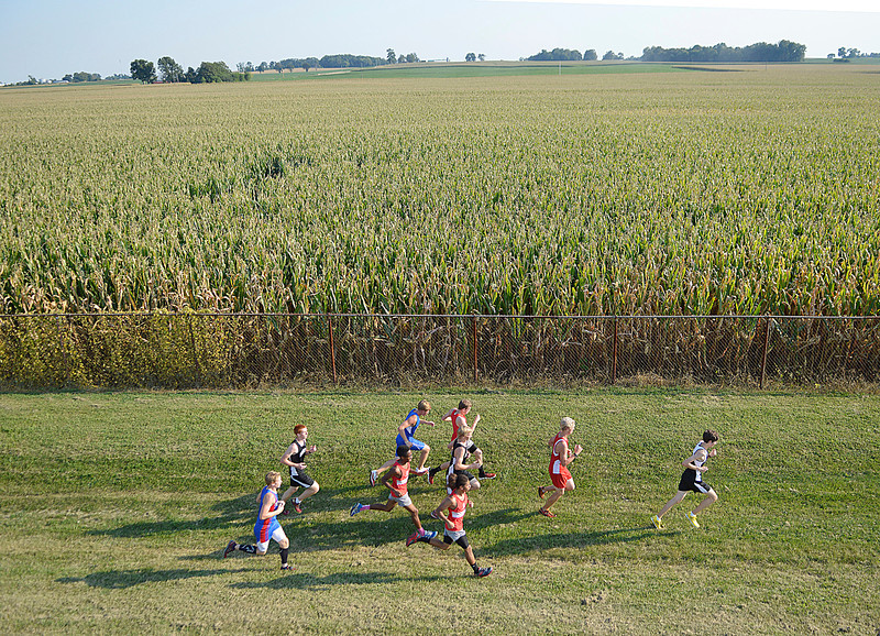 Runners in the junior-senior race of the 33rd Alan Hopewell Classic make their way around the course at Gibson Southern.