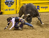 National Finals Rodeo<br /> Las Vegas 2010<br /> <br /> ©2010 JR Howell, All Rights Reserved.<br /> JR Howell<br /> 1812 37th Street Ct<br /> Moline, IL 61265<br /> JRHowell@me.com