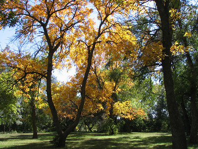 Sappa Park near Oberlin, Kansas