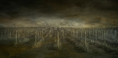 Winery in Yarra Valley
