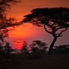 Sunrise on the Serengeti is a magical moment of peace and serenity.