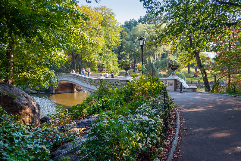Footbridge Central Park