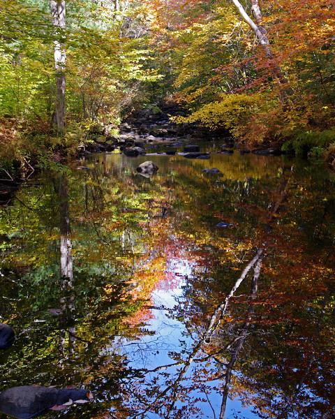 Chatfield Hollow, CT (Oct 2010)