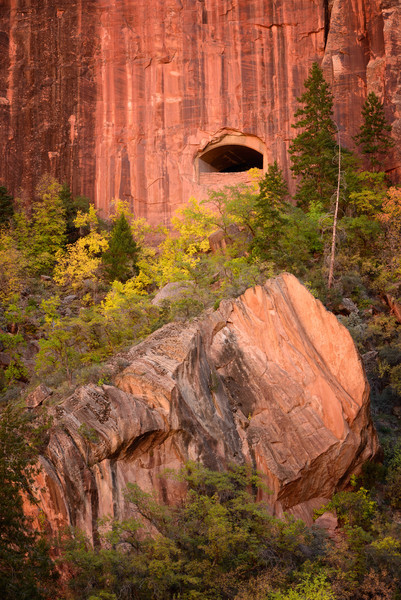 Tunnel Window, Zion National Park