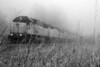 Foggy Train, Mesquite, TX (Jan 2007)