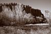 Oak Creek Canyon - Sedona, AZ