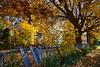 Utah - Fall colors
