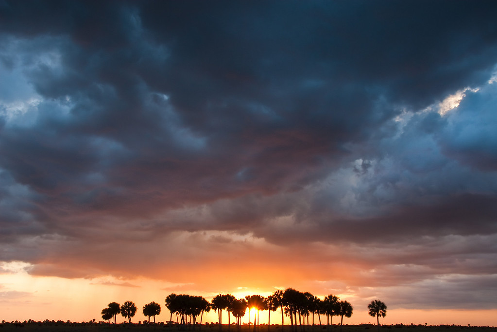 The sunset colors reflect off the clouds on an unsettled evening over the Florida prairie