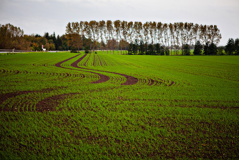 Germany farming