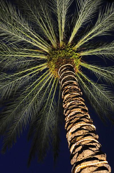 West Palm Beach, Florida, December 2008