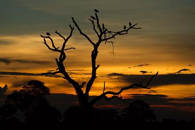 Mato Grosso, Brazil