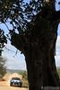08 raikkonen k lindstrom k citroen DS3 WRC portugal 09