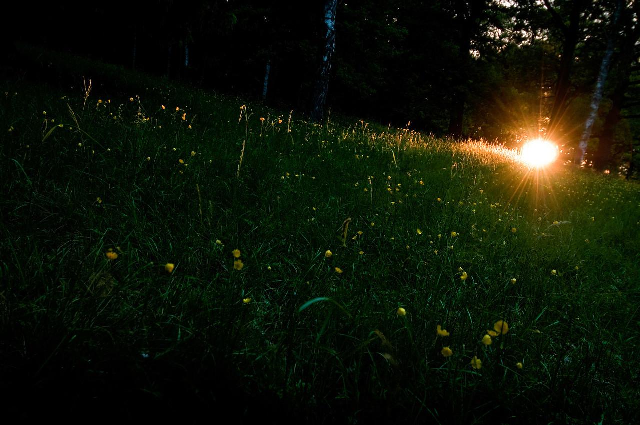 Sista ljuset