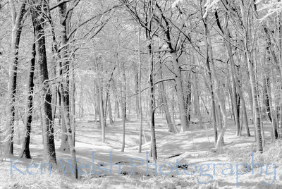 """""""Tranquil Blanket""""  © Copyright Ken Welsh"""