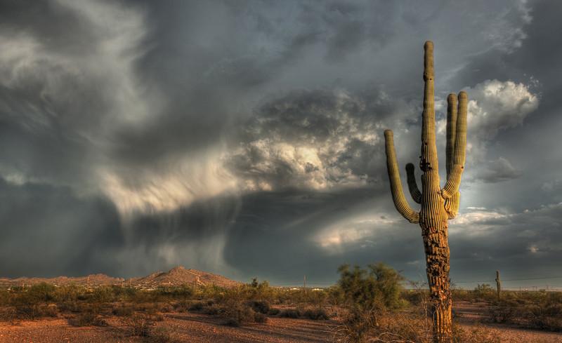 Arizona summer storm
