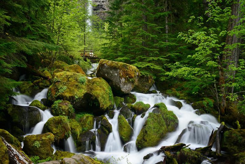 Cascade below Watson Falls, <br /> Umpqua National Forest, Oregon