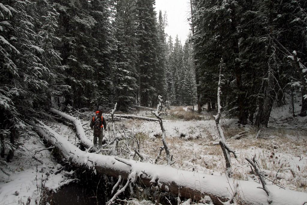 Alexander Lee tries his hand at elk hunting<br /> <br /> Maroon Bells-Snowmass Wilderness, CO