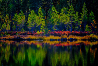 Colorful autumn pond