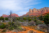 My favorite photo of Sedona