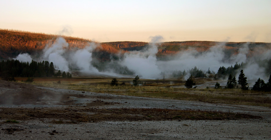 Early morning steam, Upper Geyser Basin, Yellowstone National Park, Wyoming