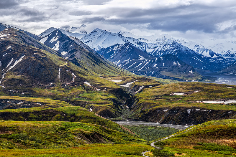 Beauty of Denali